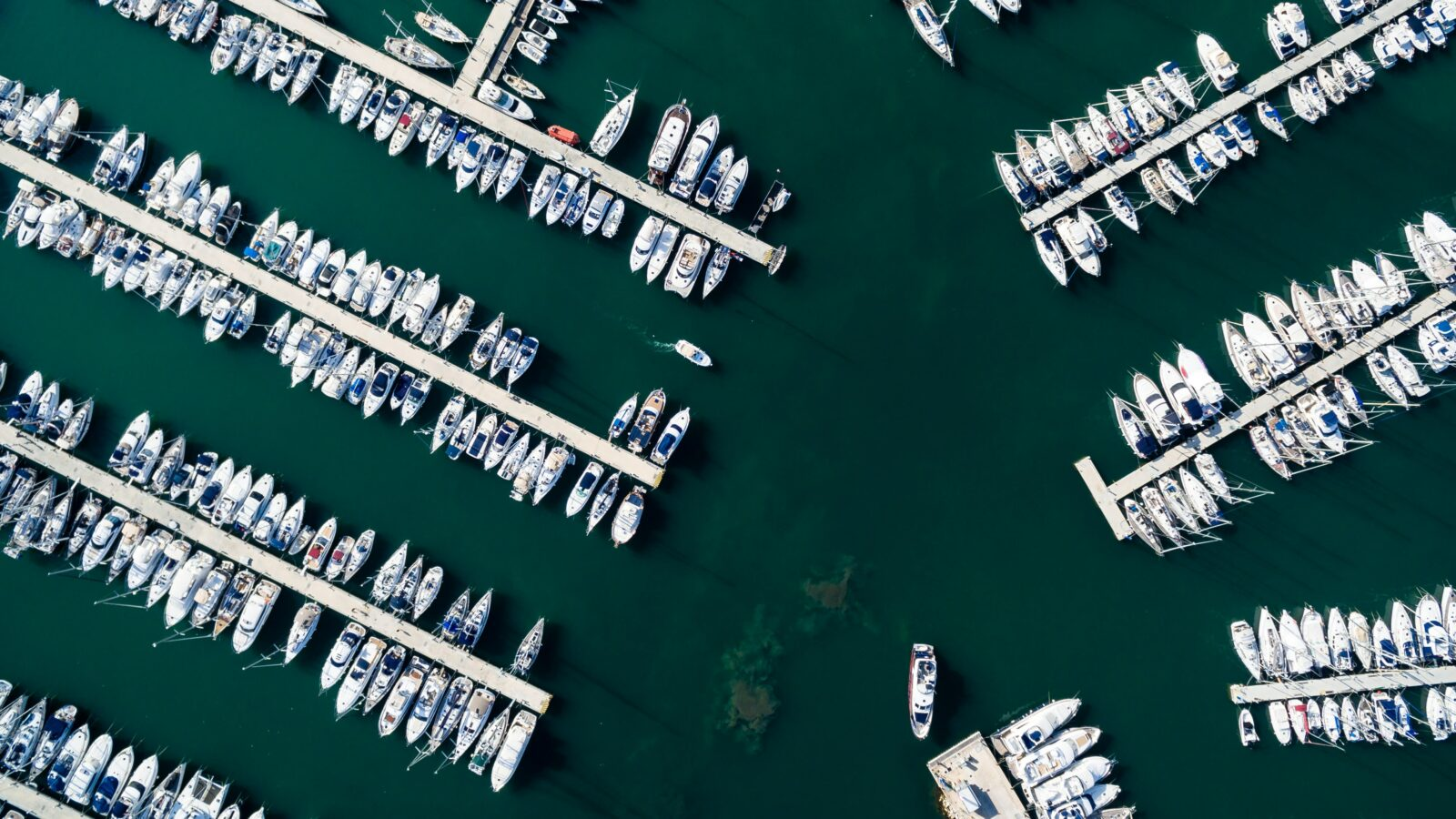 denia marina spain harbor